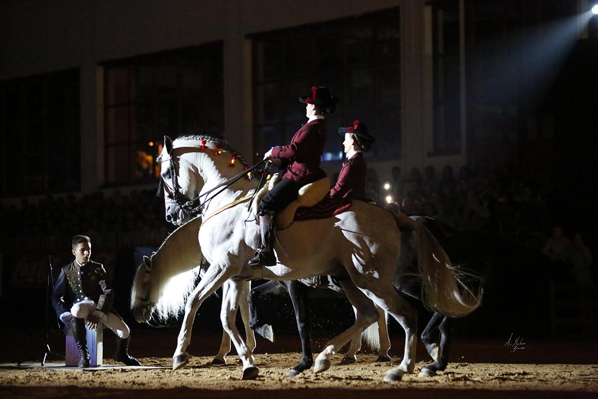 Espectáculo ecuestre en Granada